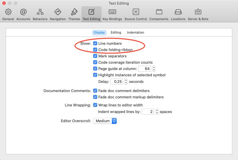 Preferences ▸ Text Editing ▸ Display