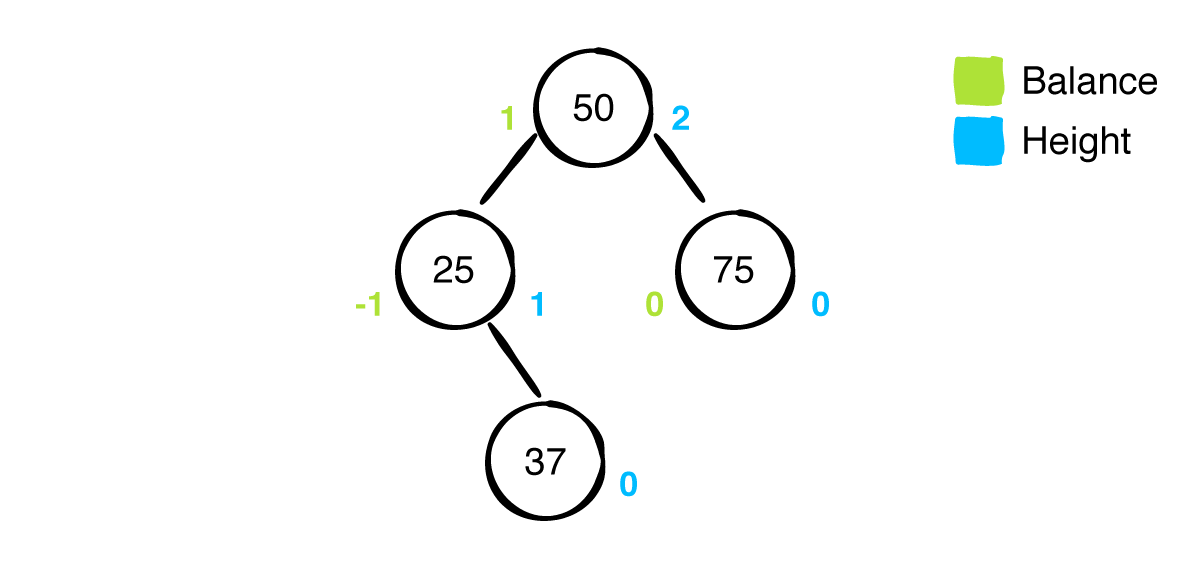 AVL tree with balance factors and heights