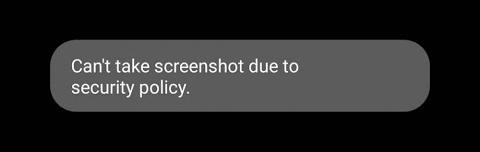 Figure 15.6 — Screenshot Security Alert