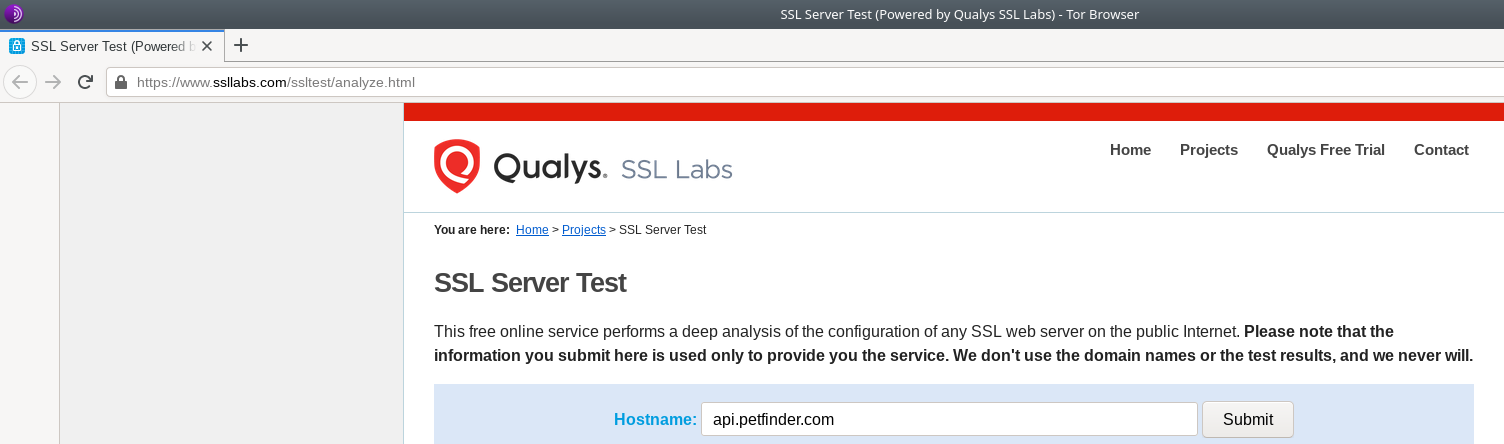 Figure 17.4 — Insert Your Domain into the SSL Lab Website