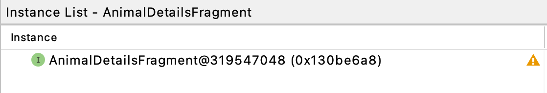 Figure 21.10 — Memory Profile Leak Instance List