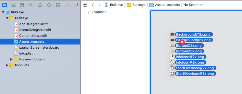 Dragging files into the asset catalog