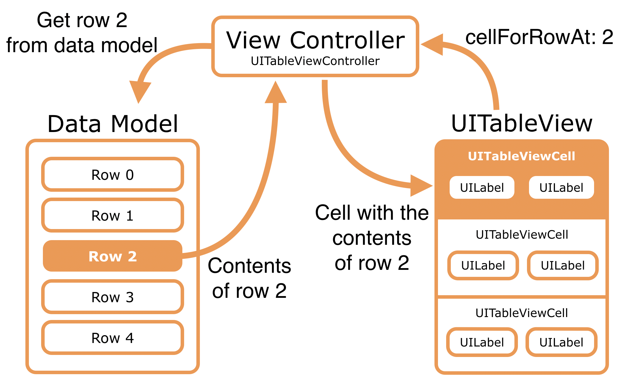The table view controller (data source) gets the data from the model and puts it into the cells