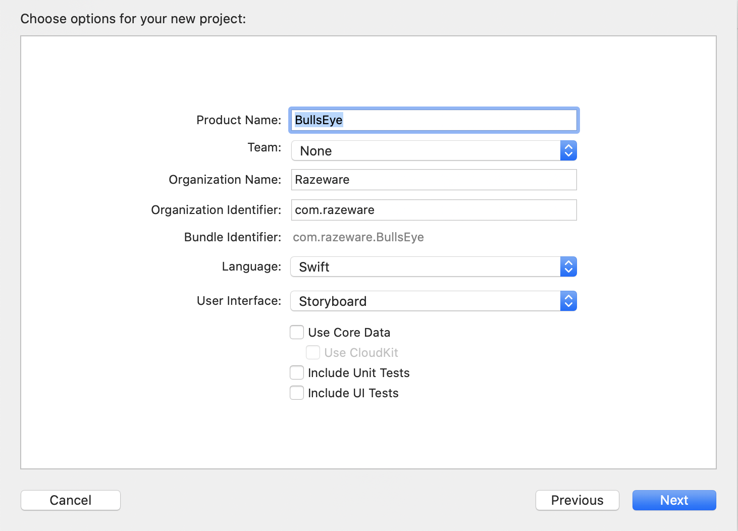Configuring the new project