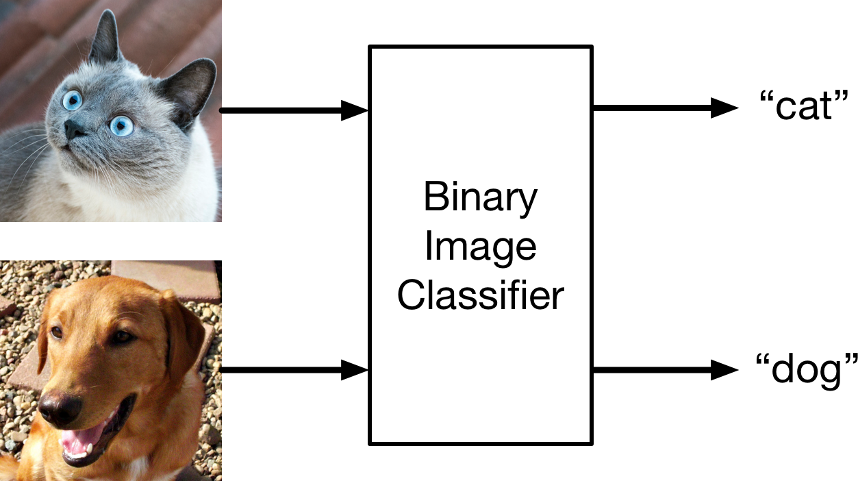 A binary classifier for cats and dogs